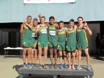 Varsity boy's cross-country team dominates sections and moves on to state meet